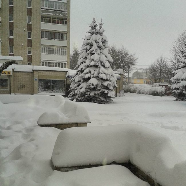 Copiose NEVICATE in Ucraina. Le FOTO
