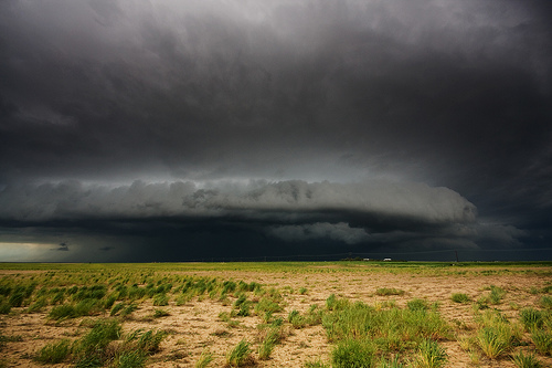 shelf cloud 8